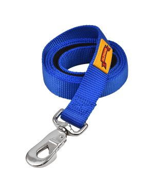 Glenand  Padded Leash 1 Inch Blue