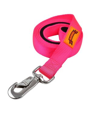Glenand padded Leash  1 inch Pink