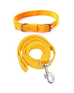 PETZ Puppy & CAT  Collar With Leash (Small, Multi Color) Color May Vary 1Piece