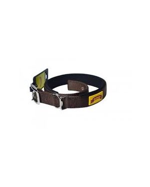 Glenand Padded Collar 1 Inch Brown Colour