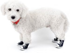 Dog Shoes Denim Canvas Puppy Lace up Sneaker Outdoor Walking Dog Booties ( 5 SIZE )