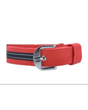 Glenand Sustainable & Eco Friendly Material Adjustable Dog Collar (RED)