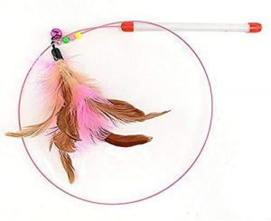 Pet Friendly Cat Toy/Feather Teaser Stick/Training Toy for Cat/Kitten (1 Pcs)