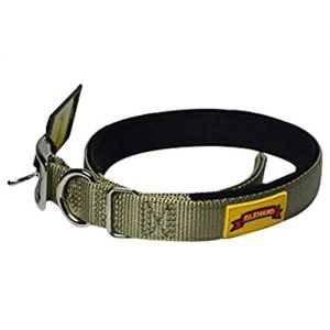 Glenand Padded Collar 3\4 Inch Grey Colour